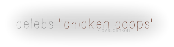 7lovejohnson-celeb-chicken-coops